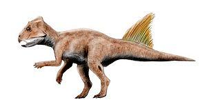 Archaeoceratops - A. yujingziensis.