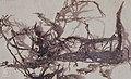 Armillaria mellea, honey agaric, bootlaces (= rhizomorphs), from under bark of dead beech, Ocherwyth carboniferous limestone quarry near Risca, 21 5 1969 (30720332800).jpg