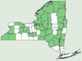 Asclepias incarnata ssp incarnata NY-dist-map.png