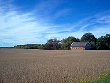 Autumn Soybean fields awaiting harvest in Blackford County