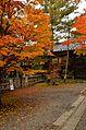 Autumn foliage 2012 (8253660942).jpg