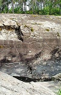 Bøla rock carvings the reindeer.JPG
