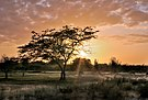 Backlit Margarita Island Sunset in Las Guevaras, Venezuela CaptureNX2.jpg