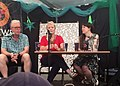 Backwell Festival 2018- political debate.jpg