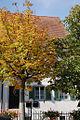 Baettwil SO, Gemeindeverwaltung (1503648739).jpg
