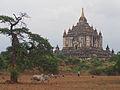 Bagan Myanmar (15110528905).jpg