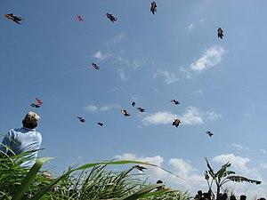 Bali Kite Festival - Bebean (fish-shaped) kites flown at the Bali Kite Festival