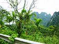 Bang Thong, Thai Mueang District, Phang-nga, Thailand - panoramio (1).jpg