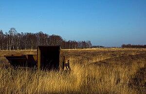 Bargerveen Nature Reserve - Image: Bargerveen 8
