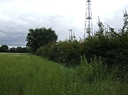 Barley field and Humble Green masts - geograph.org.uk - 477975.jpg