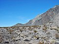 Bat Mountain (Funeral Mountains, Inyo County, California, USA) 4.jpg