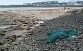 Beach, Millisle (3) - geograph.org.uk - 739925.jpg
