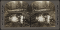 Beautiful Sacandaga Park, N.Y, from Robert N. Dennis collection of stereoscopic views.png