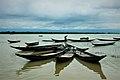 Beautiful bangladesh Raatargul.jpg
