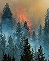 Beaver Creek Fire 2013 Idaho 1.jpg