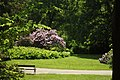 Benešov, Konopiště, růžová zahrada.JPG