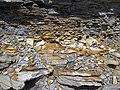 Bentonite (105.6 Ma) in the Dakota Sandstone (Lower Cretaceous) (Dinosaur Ridge, Colorado, USA) 2 (22021521100).jpg