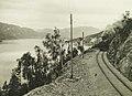 Bergensbanen langs Krøderen (5573181467) (cropped).jpg