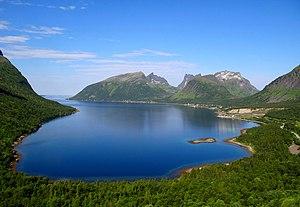 Berg, Norway - Image: Bergsbotnen 2011