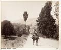 Bild från familjen von Hallwyls resa genom Mindre Asien och Turkiet 27 April - 20 Juni 1901. Bursa - Hallwylska museet - 103213.tif