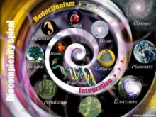 The biocomplexity spiral is a depiction of the multileveled complexity of organisms in their environments, which is seen by many critics as the ultimate obstacle to transhumanist ambition.