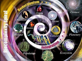 Biocomplexity - Biocomplexity spiral
