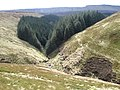 Birchin Clough - geograph.org.uk - 1242113.jpg