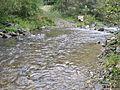 Bistarska reka8.JPG