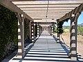 Black Stallion Winery, Napa Valley, California, USA (8333173915).jpg