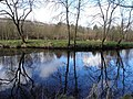 Blue reflective sky, Camowen River - geograph.org.uk - 1777743.jpg
