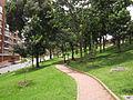 Bogotá - Parte alta del parque El Virrey.jpg