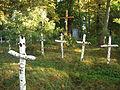 Bolekhiv Sich riflemen mass grave-3.JPG