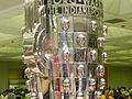 Borgwarnertrophy010.JPG