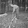 Bosbewerking, arbeiders, bomen, gereedschappen, Bestanddeelnr 251-9122.jpg