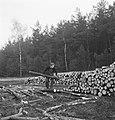 Bosbewerking, arbeiders, boomstammen, werkzaamheden, houtopslag, Bestanddeelnr 253-5983.jpg
