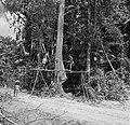 Boslandcreolen bezig met het omzagen van een boom, Bestanddeelnr 252-4880.jpg