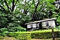 Botanic garden limbe106.jpg