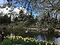 Botanische tuinen Utrecht 16.jpg