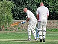 Botany Bay CC v Rosaneri CC at Botany Bay, Enfield, London 32.jpg