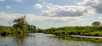 Brière Regional Natural Park - Panorama of Brière marshland