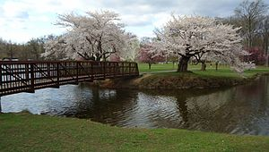 Cranford, New Jersey - View around a lake in Nomahegan Park across from Union County College.