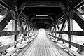 Bridge at the Riverwalk, Naperville IL.jpg