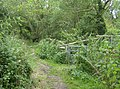 Bridleway towards Hoy's monument - geograph.org.uk - 519614.jpg