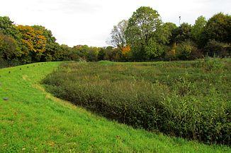 Spring area retention basin in Linden-Neusen