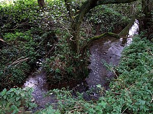 Somersby, Lincolnshire - Alfred, Lord Tennyson's babbling brook