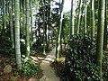 Buaiso walking path.jpg
