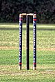 Buckhurst Hill Cricket Club wicket stumps and bails, Essex, England.jpg