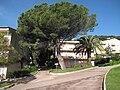 Building of Azureva Roquebrune.jpg
