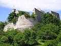 Burgruine Falkenstein (Niederösterreich).jpg