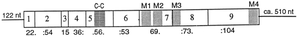 5-HT3 receptor